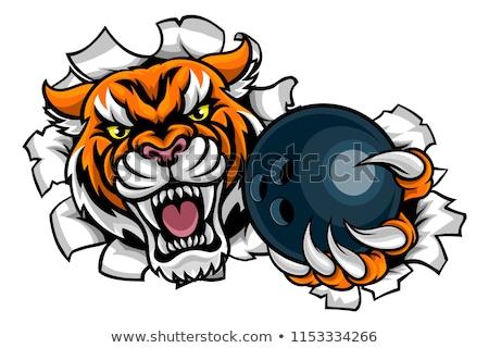 Tygrys bowling ball zły zwierząt sportowe Zdjęcia stock © Krisdog
