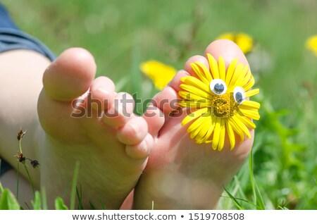 Menina margaridas grama vermelho pé Foto stock © IS2