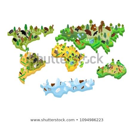 Ausztrália térkép állat izometrikus stílus növényvilág Stock fotó © popaukropa
