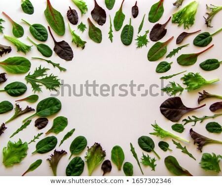 Zöldségek levelek kör fölött kilátás narancs Stock fotó © dash