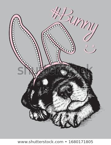 Cartoon Rottweiler Dreaming Stock photo © cthoman