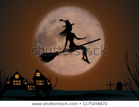 gelukkig · halloween · heks · bezemsteel · me · pop · art - stockfoto © studiostoks