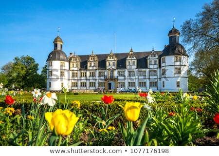 neuhaus castle in paderborn germany stock photo © borisb17