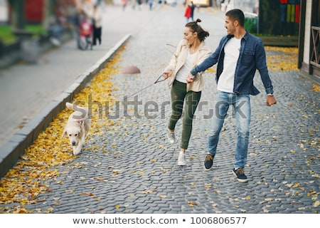 Two Male Friends Walking Dog Outdoors In Autumn Park Together stock photo © monkey_business