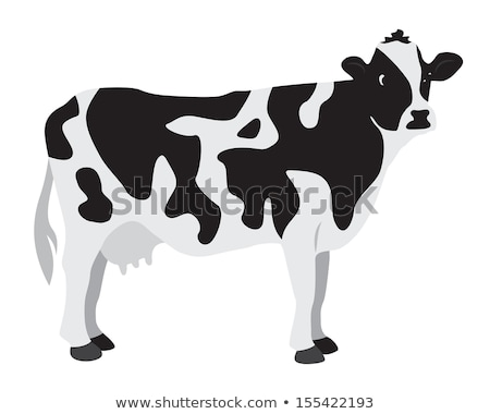 Foto d'archivio: Spotted Cow Standing On Green Grass Vector Animal