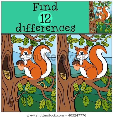 differences educational game with cartoon squirrels Stock photo © izakowski