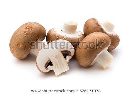 Friss champignon gombák fából készült sekély mélységélesség Stock fotó © AGfoto