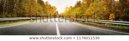 Rood heuvel weg amerikaanse woestijn hemel Stockfoto © curaphotography