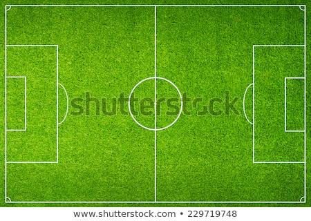 pena · fútbol · tribunal · blanco · línea · hierba - foto stock © tarczas