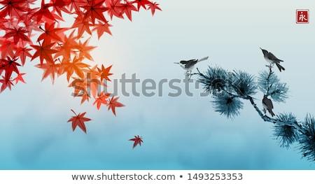 Piros ősz juhar levelek ősz keret Stock fotó © davidgn