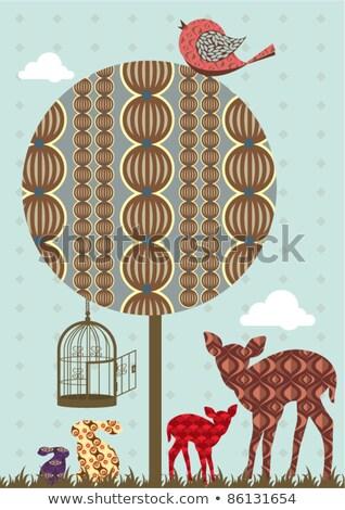 鳥 · 支店 · 鳥かご · 空っぽ · ケージ · ファブリック - ストックフォト © beaubelle