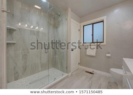 Büyük klozet oda kapı banyo duş Stok fotoğraf © iriana88w