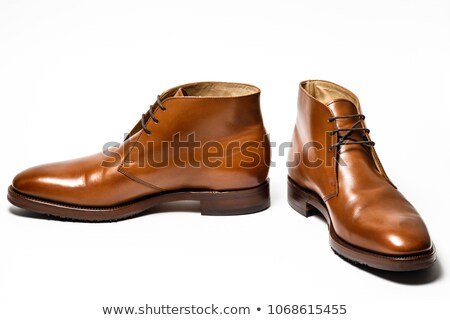 Polishing men's boot Stock photo © timbrk