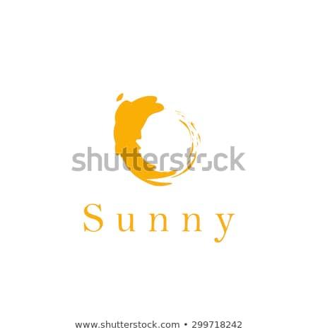 Coleção vetor logos forma sol estrela Foto stock © butenkow