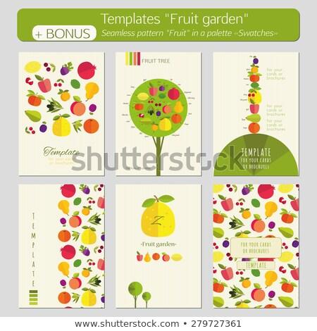 Pomelo fruit tree in the garden green. Stock photo © scenery1