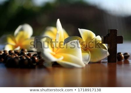 Fából készült rózsafüzér gyöngyök mintázott templom Biblia Stock fotó © kbuntu