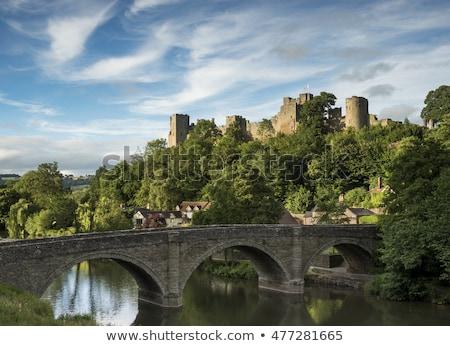 Castelo arquitetura europa férias antigo inglês Foto stock © andrewroland