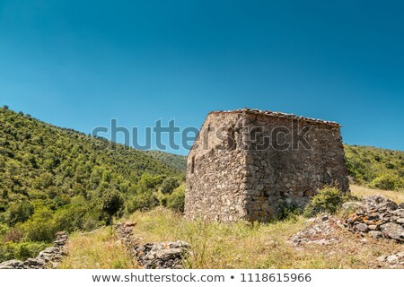 farmhouse in the hills of balagne in corsica stock photo © joningall