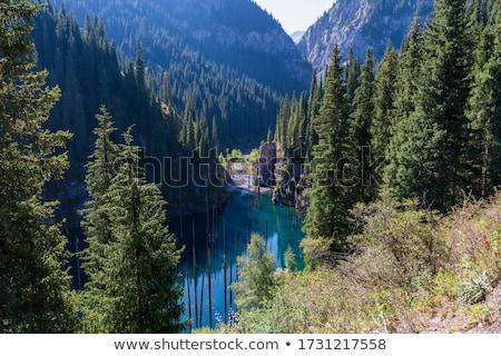 Cazaquistão pitoresco naturalismo paisagem azul árvore Foto stock © adam121
