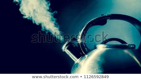 Assobiar isolado branco preto aço Foto stock © ozaiachin