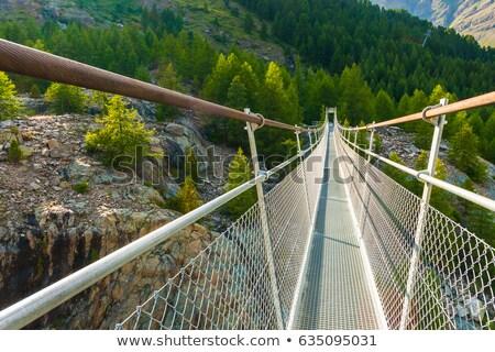 ferrocarril · puente · metal · perspectiva · vista · resumen - foto stock © michaklootwijk