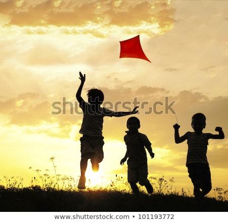 Crianças pipa silhueta pôr do sol ilustração Foto stock © adrenalina