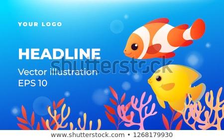 Tropicales aquarium faible subaquatique paysage Photo stock © dariazu