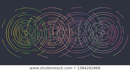 Soyut ortak merkezli model renk hatları beyaz Stok fotoğraf © ptichka