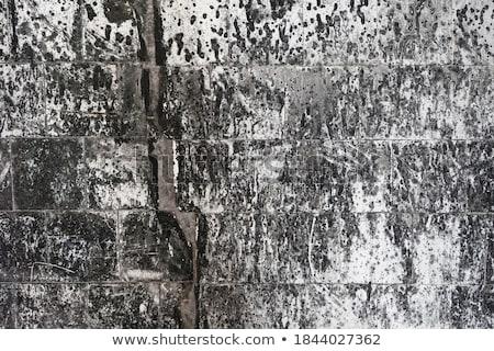 Textúra fotó tengerpart épület otthon háttér Stock fotó © Hermione