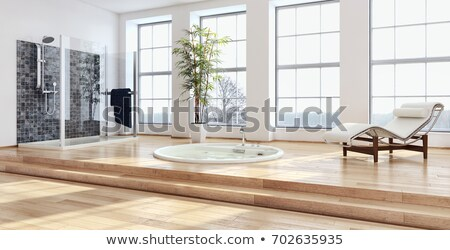 Modern shower in a luxury hotel Stock photo © luissantos84