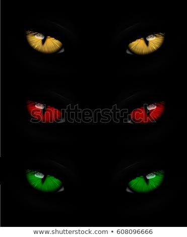 cat · occhi · gradiente · occhi · faccia - foto d'archivio © panaceadoll