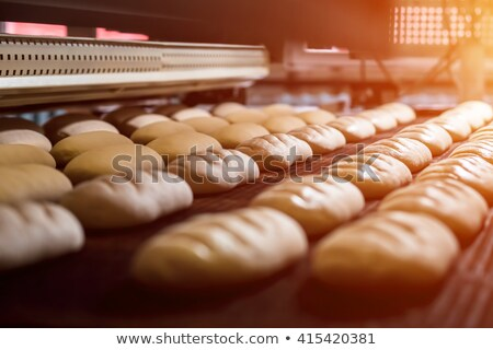 the loaf of bread baked in the bread machine Stock photo © zoryanchik