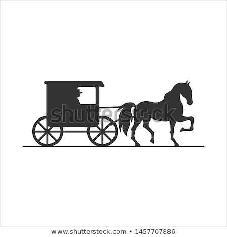 amish buggy stock photo © hofmeester