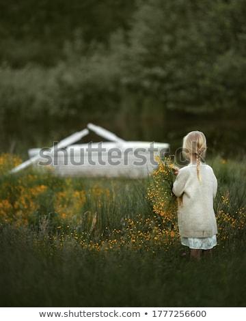 bruna · donna · capelli · lunghi · sogno · donne - foto d'archivio © is2