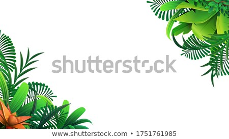 Sale poster, border frame design decorated with tropical palm leave background, vector illustration. Stock photo © ikopylov