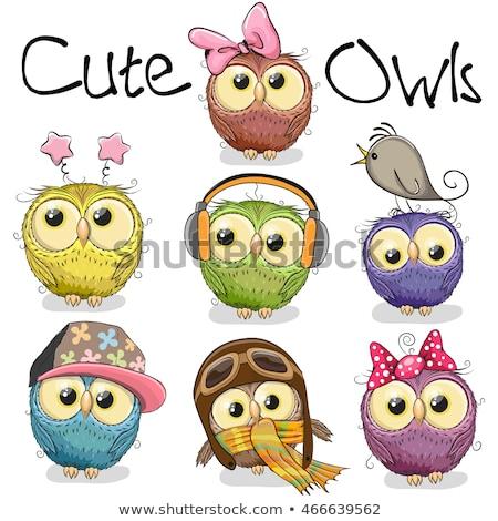 Cute Cartoon búhos diseno animales Foto stock © mumut
