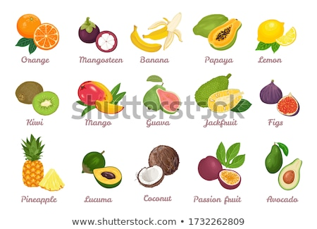 Guava Pineapple Guavas Exotic Juicy Fruit Vector Stock photo © robuart