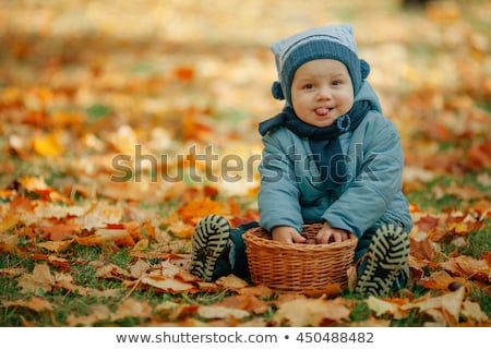 Little baby boy in the autumn park stock photo © galitskaya