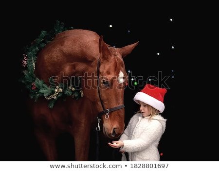 Young  woman with horse winter sport Stock photo © Lopolo