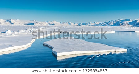 Iceberg and ice in arctic landscape nature with icebergs in Greenland icefjord Stock photo © Maridav