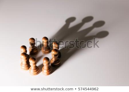 Idea Concept For Business Teamwork Stock photo © Lightsource