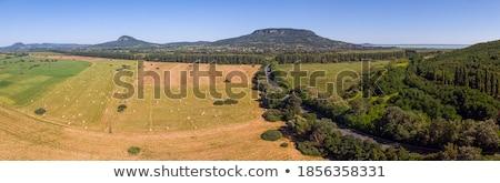 Antenne agrarisch foto Hongarije meer Balaton Stockfoto © digoarpi
