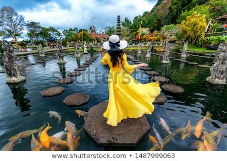 Young woman tourist in Taman Tirtagangga, Water palace, Water park, Bali Indonesia BANNER, LONG FORM Stock photo © galitskaya