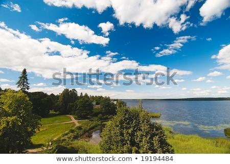 зеленый · парка · лет · Россия · дерево · природы - Сток-фото © sahua
