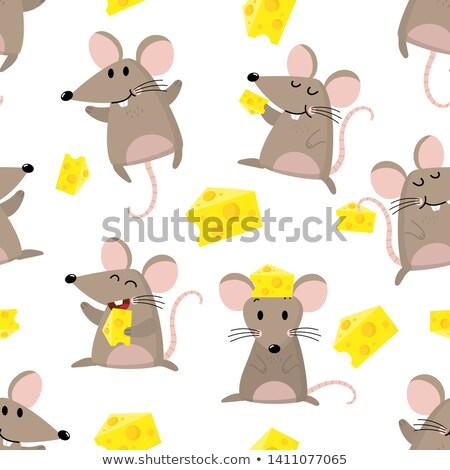 マウス チーズ パターン ピース 周りに ストックフォト © Soleil