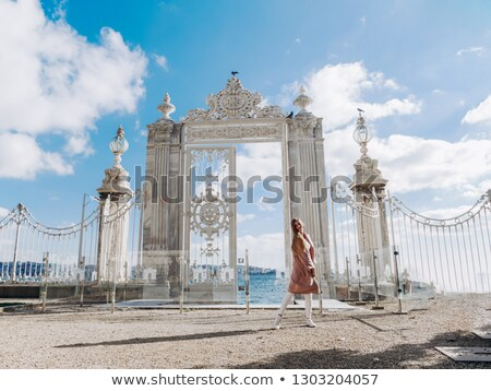 Dolmabahce Palace Gate Stock photo © HypnoCreative