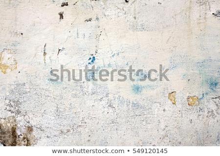 fal · plafon · elhagyatott · ház · penész · festék - stock fotó © sirylok