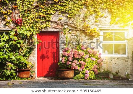 Piros ajtó külső ház fa terv Stock fotó © Julietphotography