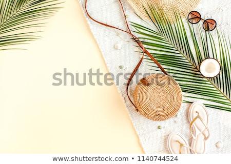 nő · szalmakalap · színes · trópusi · áll · tengerpart - stock fotó © dash