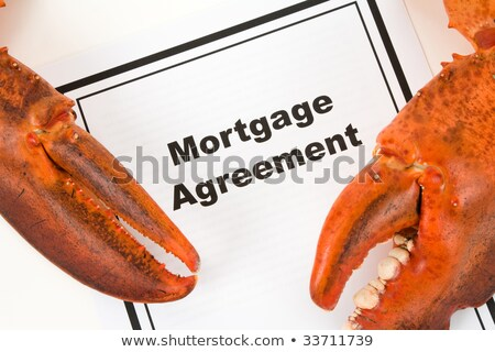 Lobster Claw and Mortgage Agreement stock photo © devon